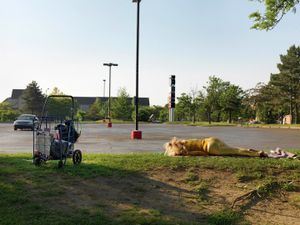 Woman Sleeping in a Parking Lot, Midtown, Detroit 2010
