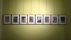 8 individual photos Left to right - 'Spring Summer Autumn Winter' Illuminated by a single light source to mirror the seasonal increase and decrease in sunlight in the natural world.