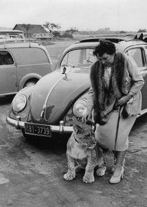 Women with Beetles