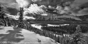 Spring - arriving in the Bow Valley