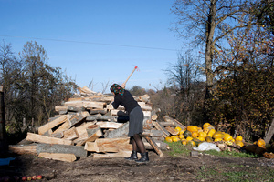 Splitting Wood with a Toy Axe