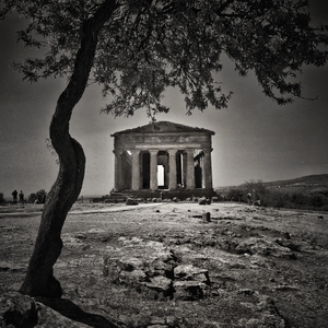 The Temple of Concord