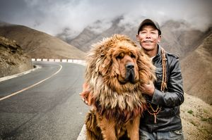 The Khampa man with his dog