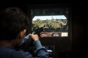 Kids wild deer hunting in a video game.  © Antonio Pedrosa