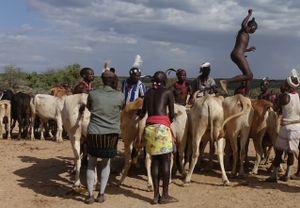 Bull-Jump Ceremony:                                      ...  running ...