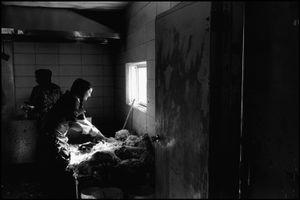 © George Webber - Preparing chickens, 1999