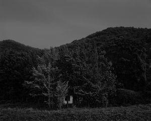 The white shaded backyard_#44 Gadukdo
