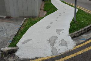 The path, NZ