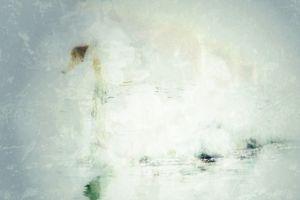 "White petals of the swan""s inner tenderness"
