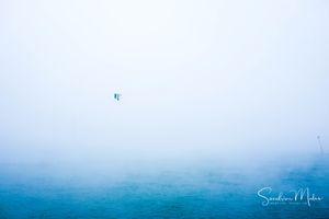 Horizon(vi)tal14
