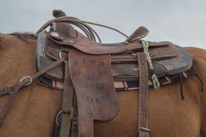 saddle work