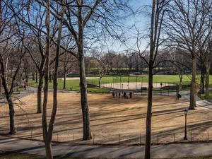 Ball Field View 2