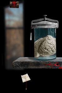 Vanitas - The Murderer's Brain               © Olivia Parker, 2010
