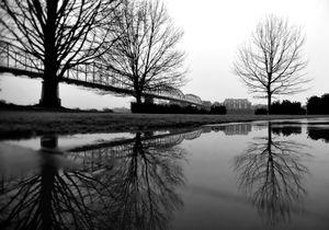 Solitude Reflection