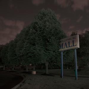 Tree Eats Malls