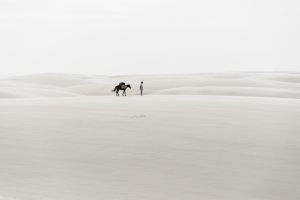 Living in desert