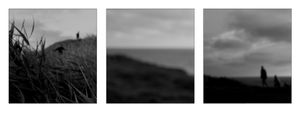 Late Summer/ Triptych