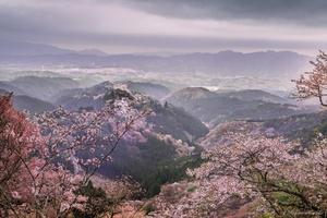 Yoshino mountain (world heritage) Nara