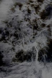 Untitled (Trees 6)