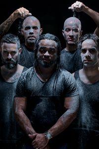 Contaminados 4, Cultura Profética, Puerto Rican Reggae Band.