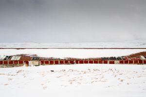 Cowshed, Kleifarvatn.