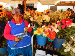 flores ecuatorianas