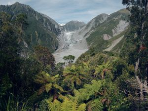One of the most impressive aspects of the glacier is the juxtaposition between the glacial ice and lush vegetation nearby. The rainforest sits underneath the retreating glacier. It is just one of two such glaciers in the world.