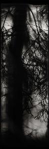 © Stig Marlon Weston, participating artist in LensCulture FotoFest Paris, 2013