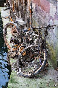 Found my bike