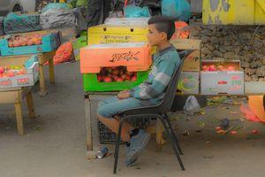 Nabi Saleh Fruit Seller