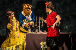 The Beauty and the Beast a controversial vision