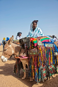 'Most beautifully decorated donkey' ('l'âne le mieux harnaché') contest at the Cure Salée festival; Niger