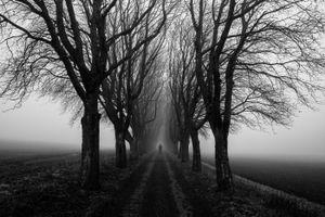 Small © Alan Thomas Duncan Wilkie