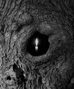 Tree Candle 7