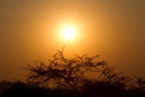 Zimbabwe Sunset.
