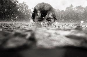 Storm Swim