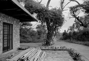 """""""Colonial House"""" 1992"""