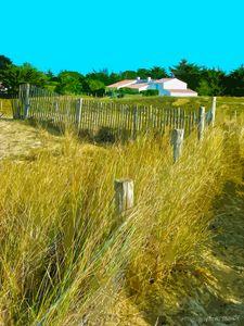 Maison sur la dune de Luzeronde - 2010
