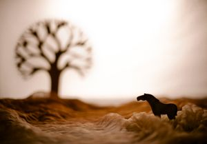 Wooden small horse
