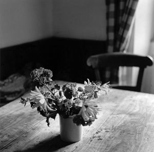 Maialen's Table. Anhauze.
