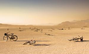 Bicycle Graveyard, Burning Man, 2012.