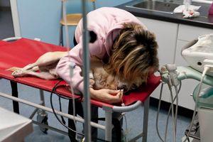 Billy, 3. Spinal injury. Emergency room. © Luigi Avantaggiato