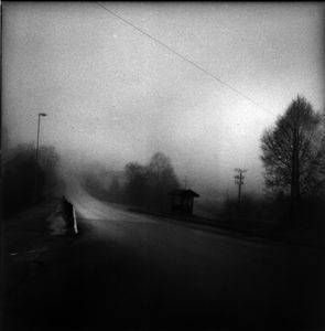 © 2008 Catherine Cameron