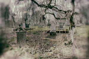 Cashel Cemetery, Newtowncashel, Co Longford, Ireland.