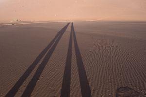Two Long Shadows