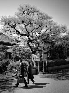 Wabi-sabi in everyday life... going to work in Tokyo.