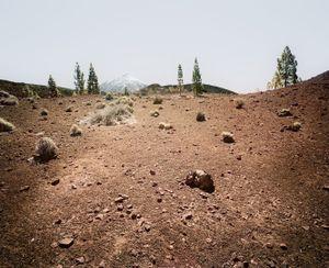 El Teide, view #12