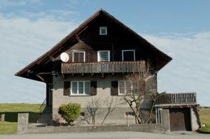Dornbirn Houses #9  / 2013