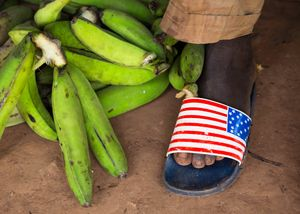 Ivorian Plantains (Category - Street)