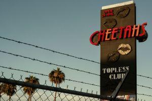 The Cheetahs I